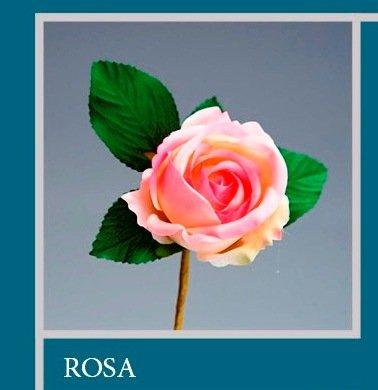 'Set 12 pièces, Bonbonnière Fleur Bouquet Fleur Rose cm 7 x 13 (ck5017 – 12pk) (Rose)