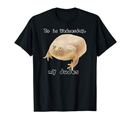 It is Wednesday My Dudes Funny Classic Frog Meme Original T-Shirt