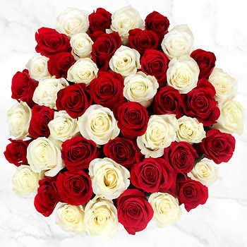 SCS Artificial Rose Flowers Foam(White;Red,100 Pieces)