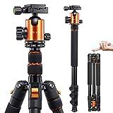 Best Dslr Tripods - VICTIV Camera Tripod 81 inches Monopod, Aluminum Travel Review