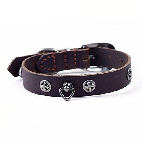 Retro leren halsband bruin hondenhalsband voor kleine middelgrote honden Martingal Dog Collar halsketting luxe hondenhalsband kettinghalsband huisdier, Medium, Braun 2.5cm