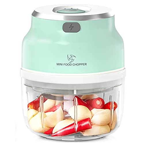 Mini Food Chopper, Durable 250ml Mini Food Processor & Vegetable Chopper to Chop, Powerful Food Chopper with 4 Blade for Garlic/Onions/Nuts/Pepper/Salad/Fruits/Vegetables, Fast Chop Piece In Seconds
