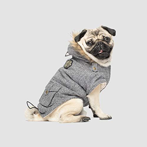 canada goose dog coats - 2