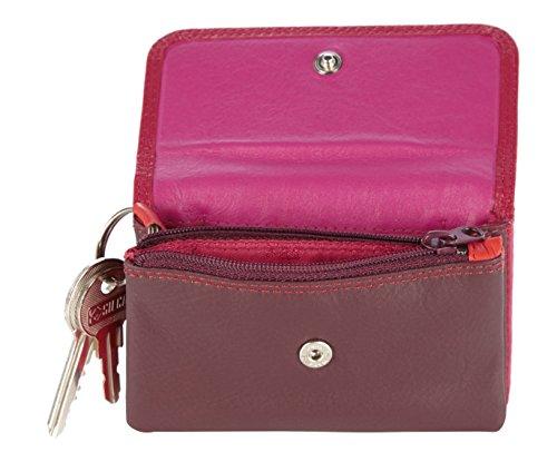 Visconti Leder Damen Minigeldbörse Rainbow Multicolor/Mehrfarbig Purse (RB99): (Plum Multi)