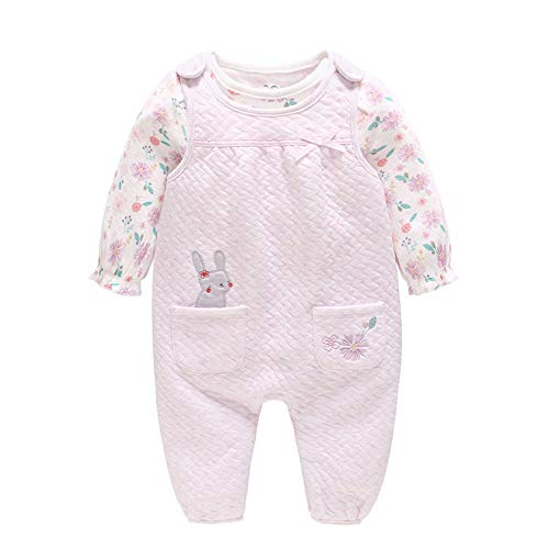Norhu Toddler Baby Girls Outfit Cotton Ruffle Long Sleeve Shirts Tops with Girl Overall Pants Clothing Set (Pink-Purple, 3-9Months)