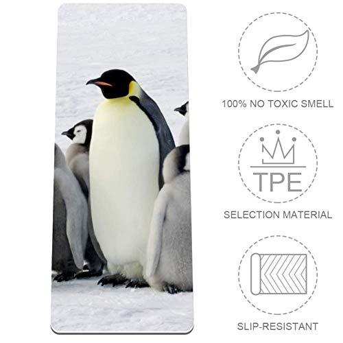 Emperor Pinguin Antarktis Tier Yogamatte rutschfest TPE zertifiziert ungiftig Gymnastikmatte Sport und Boden Übungsmatte für Yoga, Pilates (182,9 cm L x 81,3 cm B x 0,3 cm dick)