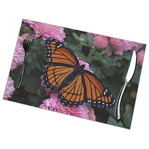 Singledog Juego de manteles Individuales de 6, manteles de Mesa Lavables Butterfly Virrey