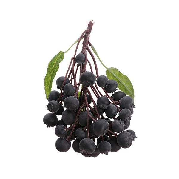 Yardwe Artificial Bunch of Fruit Realistic Artificial Fake Fruit Blueberries for Home Party Kitchen Decoration Photography Props