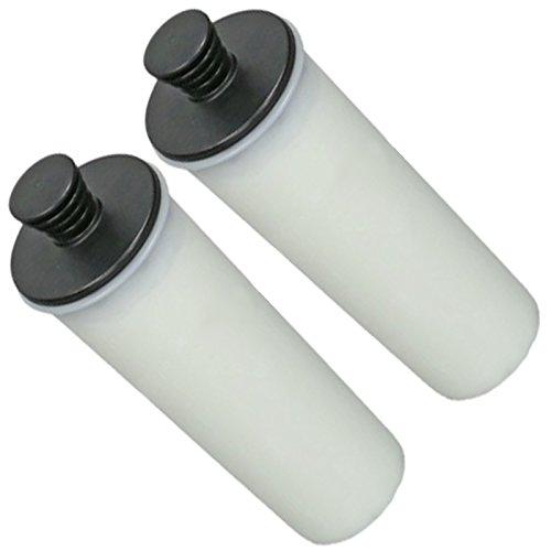 Spares2go détartrant cartouche de filtre pour Karcher SC3 nettoyeur vapeur (lot de 2)