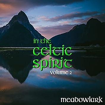 In the Celtic Spirit, Volume 2