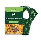 Legona® - Schlupfwespen gegen Lebensmittelmotten / 6X Trigram-Karte...