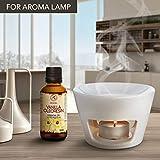 Zoom IMG-2 olio essenziale di vaniglia oleoresin