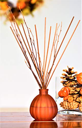 Manu Home Vanilla Spiced Pumpkin Reed Diffuser Set | 6.5 Ounce Fill | Nostalgic Scent Crafted with Aromatherapy Oils, Pumpkin Extract, Vanilla and Pecan | Brown Reeds and Branches | Made in USA.