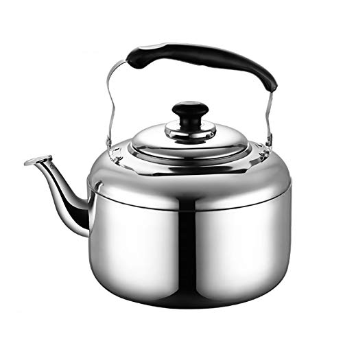 Camping Coffee Pot, Large Capacity Stainless Steel Tea Kettle, Whistle Tea Kettle, Suitable for Stove Top, Household Kitchen Tea Kettle (Color : Silver, Size : 3L)