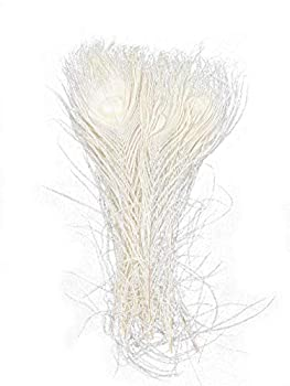 Peacock Feathers Bleached Dyeing Beige 10-12 inch for DIY hat Craft Clothing vase Decoration per Pack of 20