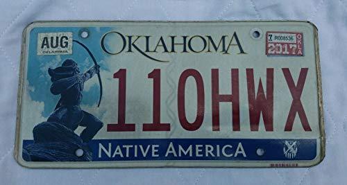 TammieLove Oklahoma Apache Warrior Sacred Rain Arrow Native American License Plate 110Hwx 6x12 inches License Plate Sign