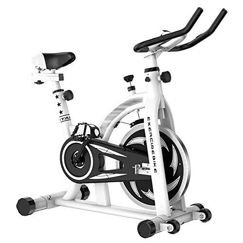 Bicicletas de spinning blancas Bicicleta de ejercicio doméstica muda con sistema de transmisión por correa de bajo ruido,manillar y asiento de altura ajustable,pantallas LCD,lo mejor para perder peso