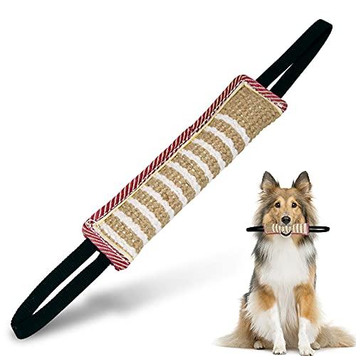 O-Kinee Beisswurst für Hunde, Zerrspielzeug Hund, Trainingsdummy, Jute Beisswurst, Beißwurst Hund, mit Zwei Schlaufen, Am Besten für Hunde Training, Tauziehen und Zerrspiele mit Hund