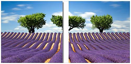 Wallario 2er Set Acrylglasbild Abstraktes lila Blumenfeld mit Lavendel - 2 x 50 x 50 cm in Premium-Qualität: Brillante Farben, freischwebende Optik