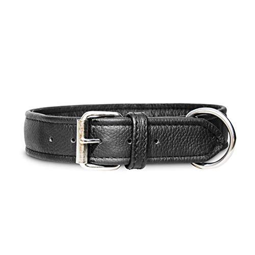 Julius-K9 Eco Leather Collar, 40 mm x 65 cm