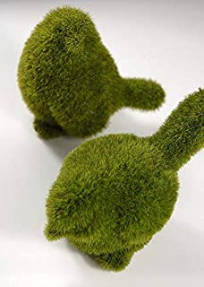 The Country House Moss Bird Fuzzy Green 5 x 4 Resin Stone Collectible Figurines Set of 2