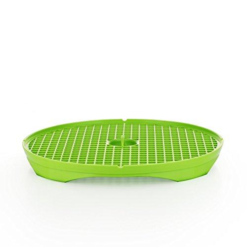 Börner Crispymaker 1er Set grün, Chipsmaker Gemüsechips Kartoffelchipsblech Mikrowelle Karotenchips Pastinaknechips vegan fettfrei