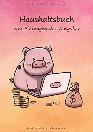 Haushaltsbuch zum Eintragen der Ausgaben: Einschreibbuch der fixen Kosten und variablen monatlichen Ausgaben für Paare – viel Platz zum Ausfüllen im Notizbuch 17x24cm – Motiv Schwein am PC