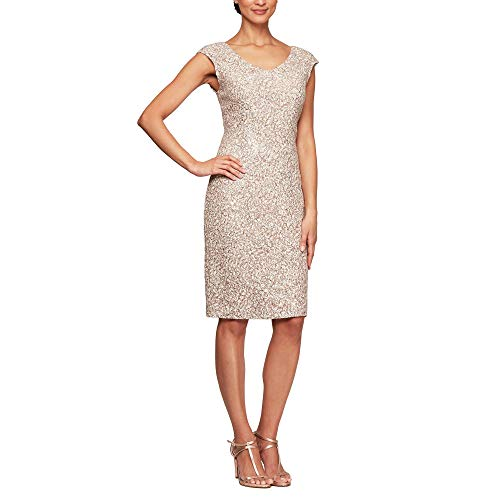 Alex Evenings Women's Midi Length Embroidered Dress, Champagne Ivory, 6 (Apparel)