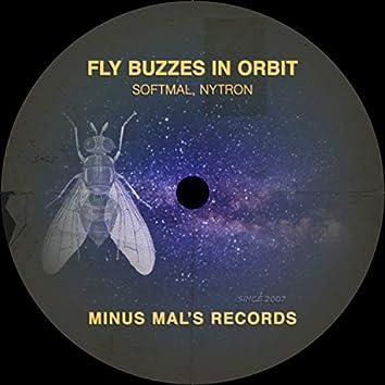 Fly Buzzes In Orbit