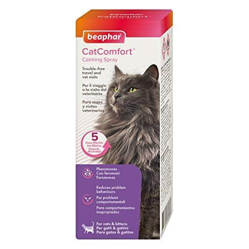 Beaphar Catcomfort Spray per Gatti, 60 ml