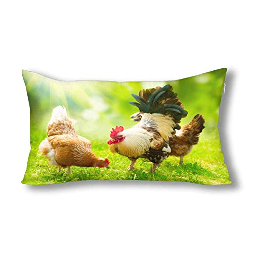 Jianyao Funny Animal Chickens Cock and Hens Decor Pillowcase Pillow Case Protector with Zipper King Size 20x36 Inch, Decorative Pillow Case Cover