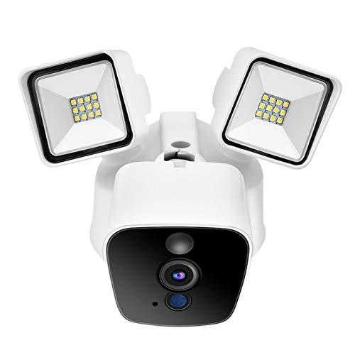Cámara de vigilancia de la cámara de Las Luces del jardín de la Lente(European Standard (100-240v))