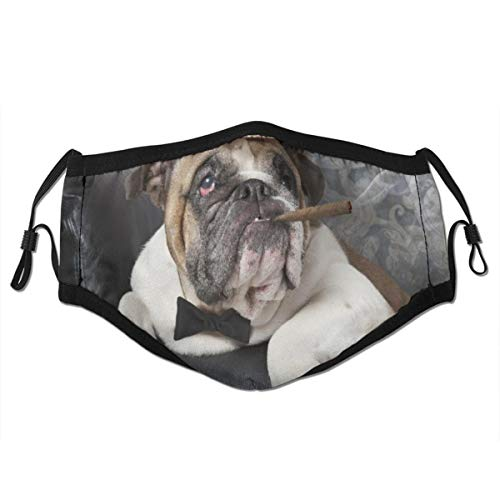 PbbrTK Wiederverwendbares Halbtuch Bandana,Porträt der englischen Bulldogge, die in einem schwarzen Ledersessel mit einer Zigarre ruht,Einstellbare Sport Outdoor Mundabdeckung