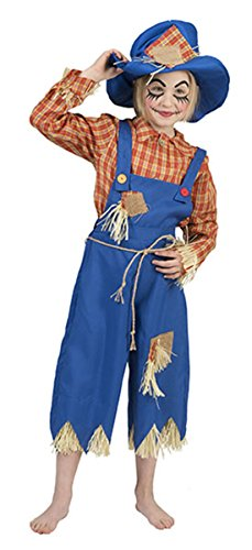 erdbeerclown- Kinder Halloween Karneval Komplett-Kostüm Vogelscheuche, Mädchen & Jungen, 158-164, 13-14 Jahre, Mehrfarbig
