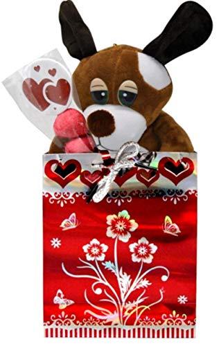 Lote de 4 Bolsas Regalo'Te Quiero' con Brocheta Golosinas y Peluche Perro. Complementos y Dulces. Regalos y Detalles para San Valentín. Fiestas de Cumpleaños, Bodas, Bautizos y Comuniones. DC