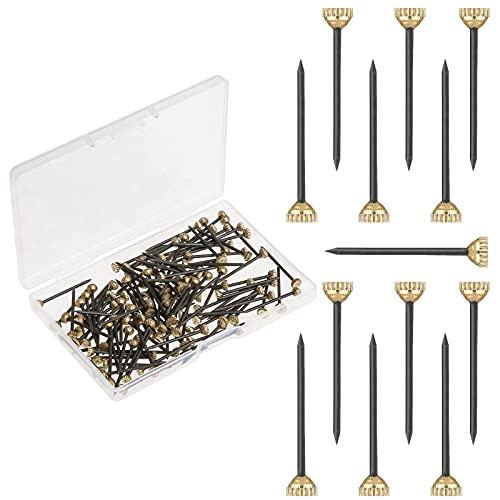 120 Stück Bildernägel Messing Kopfstifte Nägel, Messing Kopf Gehärtet Foto Haken Stift mit Kunststoff Aufbewahrungsbox(25mm/1inch)