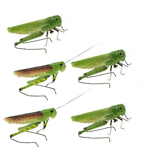 Sharplace 5pcs Animaux Simulation Modèle D'insecte Artificiel Enfants Jouets éducatifs - Criquet