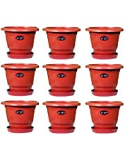 Sapling Hub - Pot Plastic Plant Container 10 inch with Bottom Tray ( Multi )
