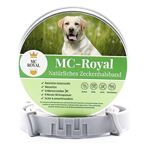 MC-Royal Katzen Bild