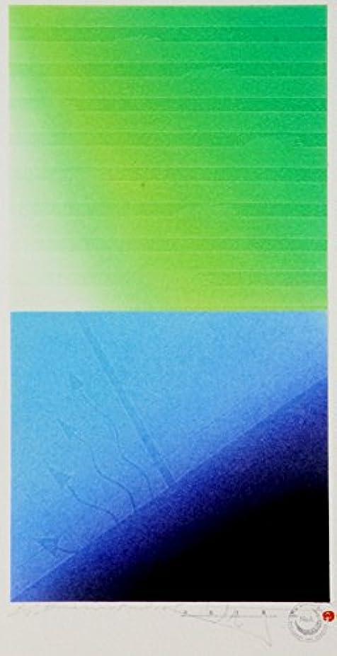 番号値View'05-P10S (額:銀箔いぶし)