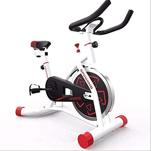 Bicicletas de ejercicio para uso doméstico Spin Bikes ajustable Manillares y cinturón de seguridad Super Mute para uso en el hogar y en el gimnasio, entrenamiento cardiovascular, blanco y negro