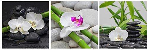 levandeo Glasbild 3er Set je 30 x 30 cm Wandbild Glas Orchideen Bambus Steine Deko Wellness Wanddeko Einrichtung