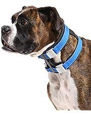 Cesar Millan Pack Leader Collar™ – obroża treningowa dla psa