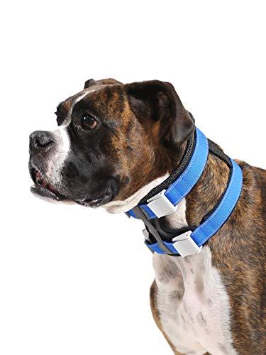 Cesar Millan Pack Leader Collar™ - Trainingshalsband des Hundeflüsterers (Mittel)