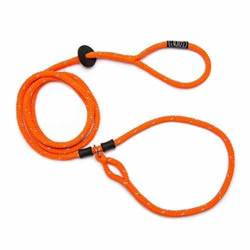 Harness Lead Laisse/Collier pour Chien Orange Taille M/L