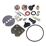 Manyao GX390 - Kit de carburador para desbrozadora, carburador, cortacésped, reparación de carburador, cortacésped, 13 HP