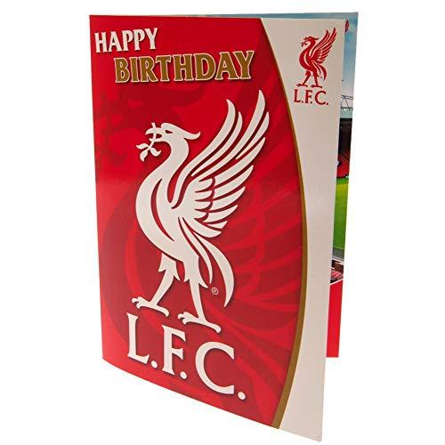 Liverpool FC Offizielle Libird-Statue