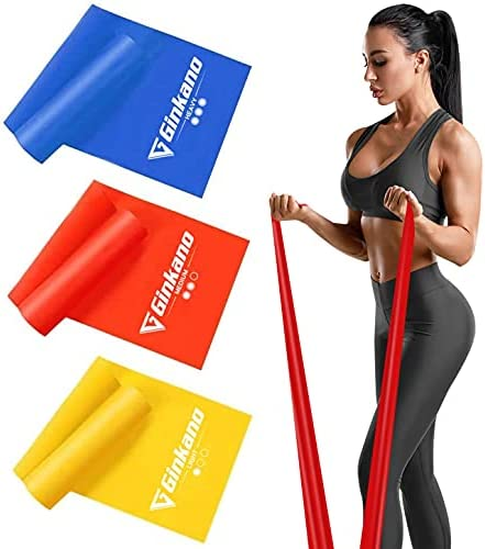 Haquno Resistance Bands Set, [Set of 3] Skin-Friendly Exercise Bands with 3 Resistance Levels,Workout Resistance Bands Set for Women Men,Ideal for Strength Training,Yoga,Pilates,Fitness