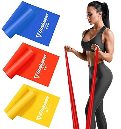 Haquno Bandas Elasticas Fitness, 1.5M Cintas Elasticas con 3 Niveles de Resistencia, Pilates, Crossfit, Estiramientos, Musculacion, Piernas, Brazos, Fuerza