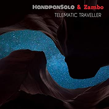 Telematic Traveller